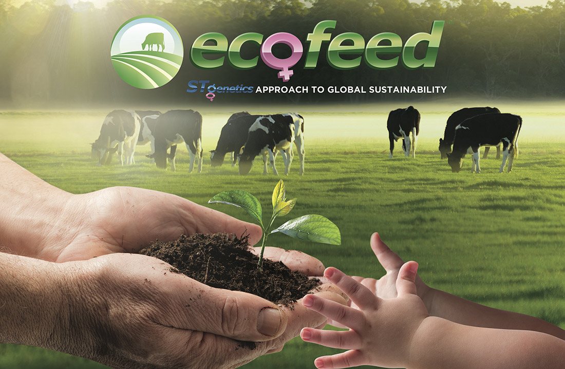 EcoFeed™ - первый и единственный в молочном животноводстве индекс прямой конверсии корма