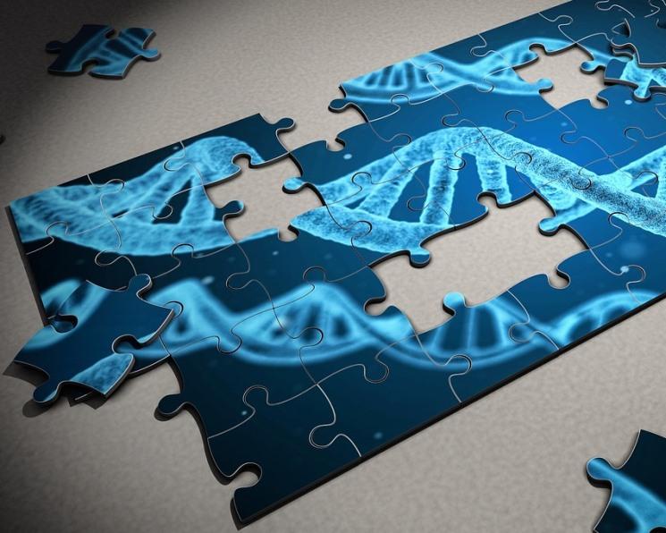 Геномная оценка - мировой тренд в селекции КРС