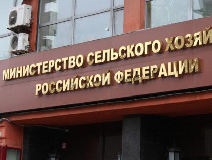 Минсельхоз РФ опубликовал проект новых правил по борьбе с лейкозом КРС